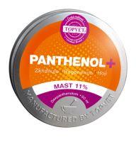 TOPVET PANTHENOL + MAST 11% 50ml